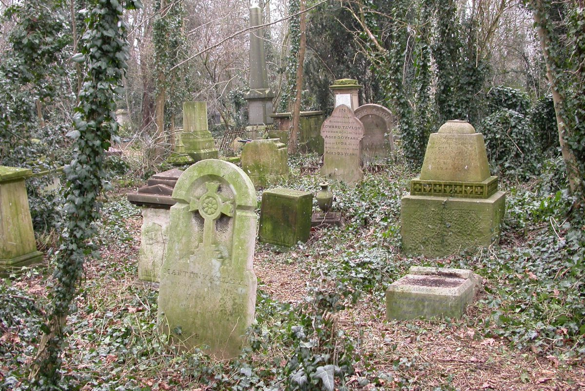 Central path through the cemetery